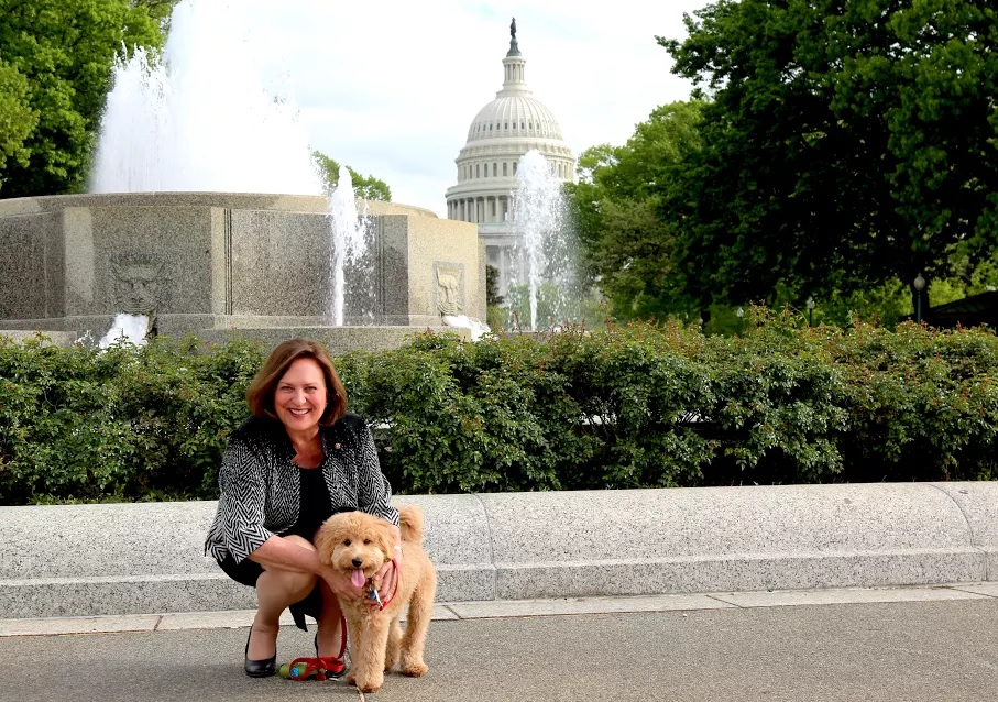 "Nebraska Sen. <a class=""memberLink"" title=""Click to view member info in a new window"" href=""http://data.rollcall.com/members/44703?rel=memberLink"" target=""_blank"">Deb Fischer</a> picked up her goldendoodle Fred in January. (Courtesy Fischer's office)"