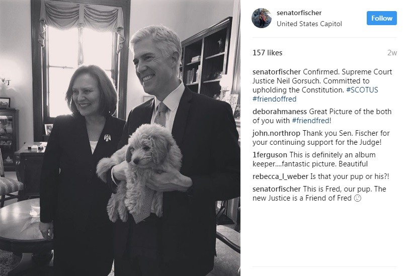 (Screenshot of Fischer's Instagram page)
