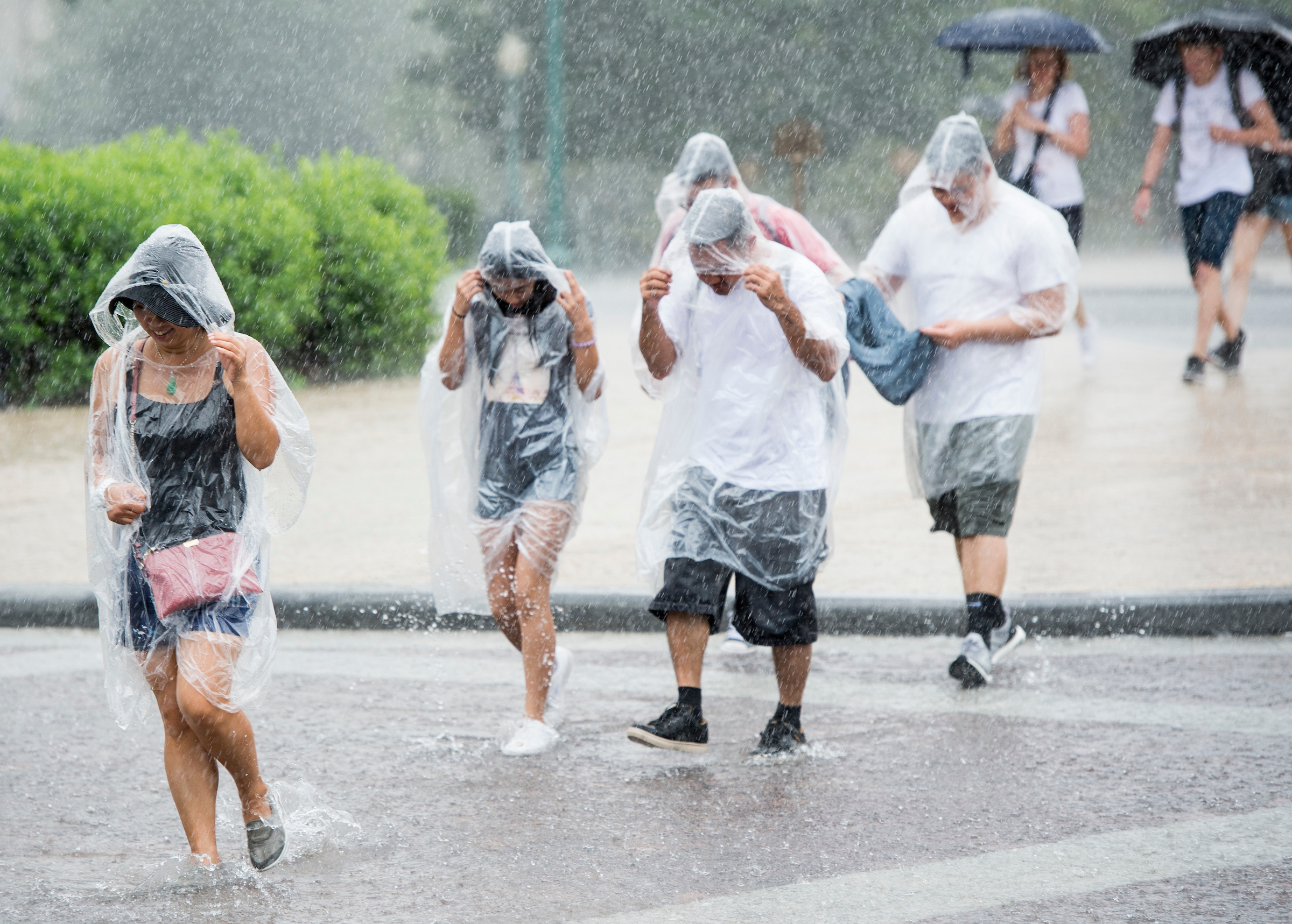 UNITED STATES - JULY 28: Tourists at the Capitol seek shelter during a torrential downpour in Washington on Friday, July 28, 2017. (Photo By Bill Clark/CQ Roll Call)