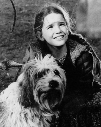 Melissa Gilbert on Little House on the Prairie in 1975. By NBC Television Network (eBay item photo front photo back) [Public domain], via Wikimedia Commons