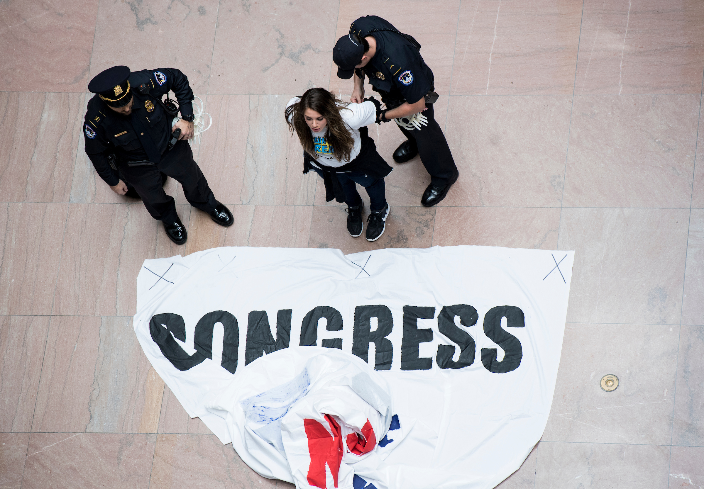 Capitol Police arrest a woman who was holding a banner demanding a clean Dream Act. (Bill Clark/CQ Roll Call)