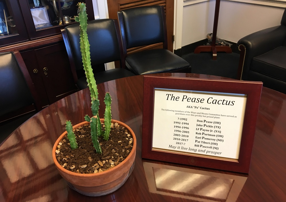 A list of former owners comes with the cactus. (Courtesy of Rep. Bill Pascrell's office)
