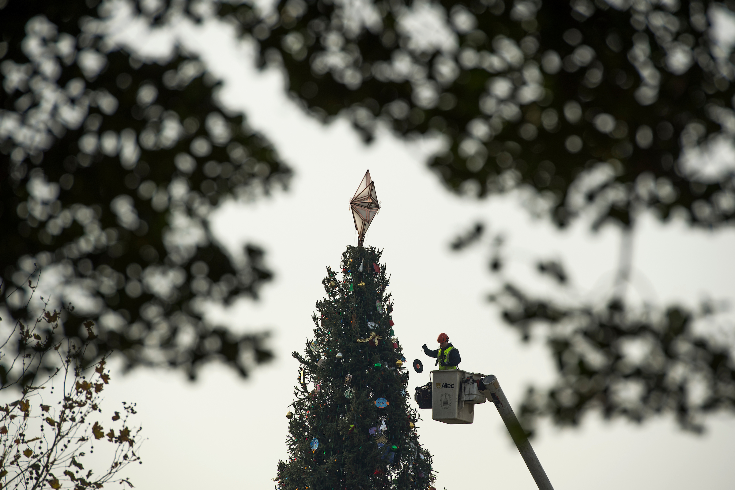 UNITED STATES - DECEMBER 04: A worker from the Architect of the Capitol decorates the U.S. Capitol Christmas Tree which was harvested from Montana's Kootenai National Forest, on the west lawn on December 4, 2017, ahead Wednesday's lighting ceremony. (Photo By Tom Williams/CQ Roll Call)