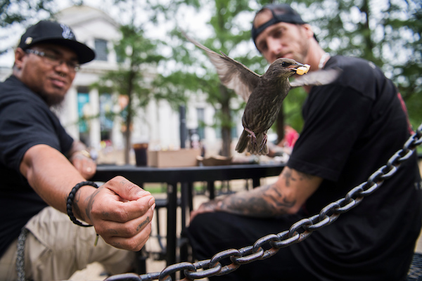 UNITED STATES - JUNE 4: Rico Senegal, left, and Jonathan Wyatt, of West Point, Va., feed a bird french fries on the National Mall on June 4, 2018. (Photo By Tom Williams/CQ Roll Call)