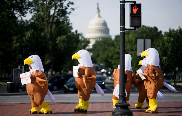 Activists dressed in eagle costumes call attention to reduced funding for national service programs in President Trump's 2019 budget as hill staffers make their way from Union Station to the Capitol complex on Tuesday morning, June 26, 2018. (Photo By Bill Clark/CQ Roll Call)