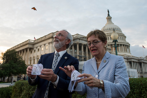 UNITED STATES - SEPT 25: Reps. Dan Newhouse, R-Wash., and Rosa DeLauro, D-Conn., release butterflies into the air as part of an event hosted by The Congressional Pollinator Protection Caucus Tuesday Sept. 25, 2018. (Photo By Sarah Silbiger/CQ Roll Call)