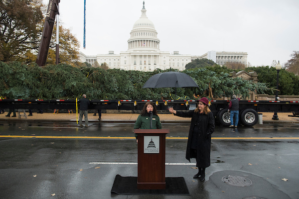 UNITED STATES - NOVEMBER 26: Acting Architect of the Capitol Christine Merdon, right, and Nikki Swanson, district director at the Willamette National Forest, make remarks before the U.S. Capitol Christmas Tree is placed on the West Front of the Capitol on November 26, 2018. The noble fir was harvested on November 2nd, from Willamette National Forest in Oregon. (Photo By Tom Williams/CQ Roll Call)