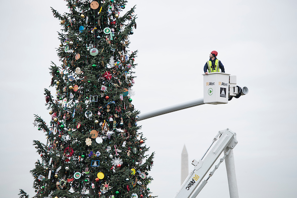 Architect of the Capitol workers start removing ornaments from the U.S. Capitol Christmas Tree on Wednesday, Jan. 2, 2019. (Bill Clark/CQ Roll Call)