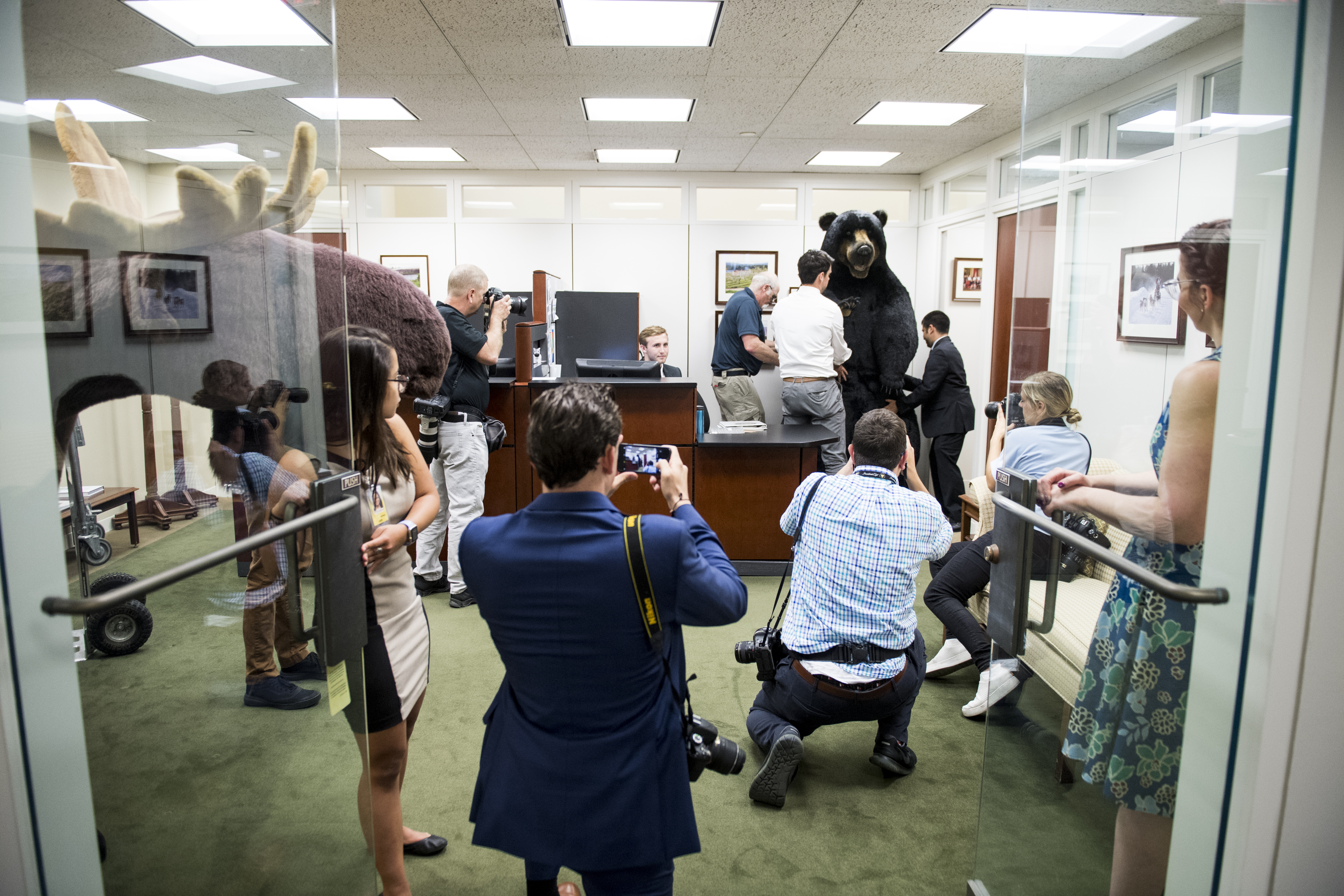 UNITED STATES - JUNE 4: News photographers take pictures as Max the Moose and Kodak the Bear are delivered to the office of Sen. Jeanne Shaheen, D-N.H., in the Hart Senate Office Building on Tuesday, June 4, 2019. The stuffed animals are brought to the Capitol every year for the Experience New Hampshire event, hosted by Sen. Jeanne Shaheen, D-N.H., which will be held Wednesday evening on Capitol Hill. (Photo By Bill Clark/CQ Roll Call)